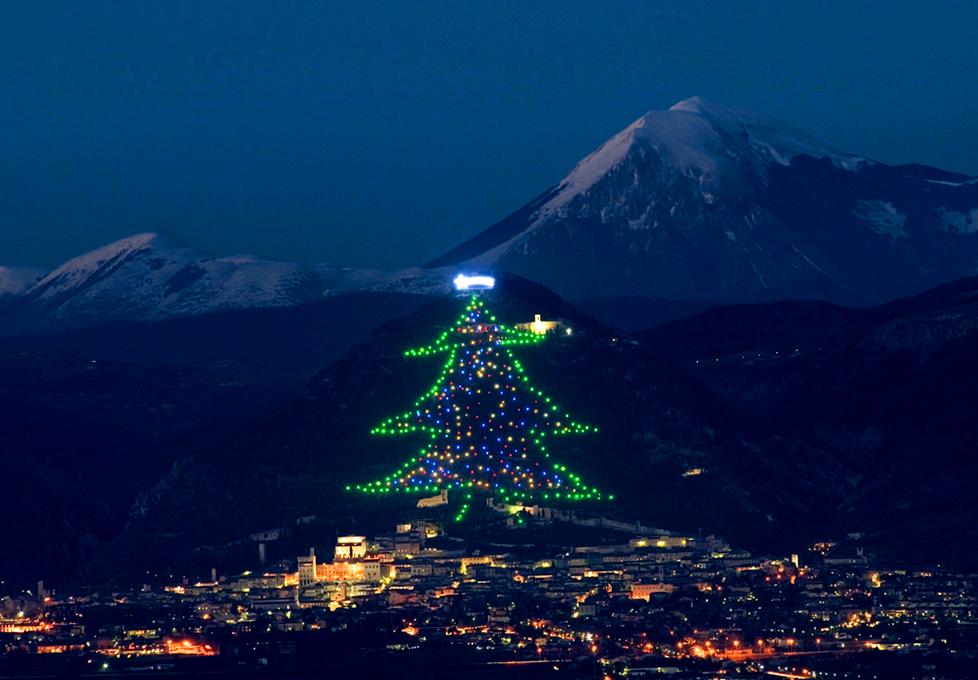 and christmas are a marriage that lasts from 1981 when on the slopes of monte ingino it was decided to build a christmas tree in honor - Largest Christmas Tree